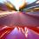 Automobilių lempos – viskas apie jas